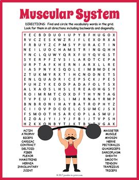 Your students will enjoy looking for all of the fun muscular system vocabulary words hidden in this puzzle worksheet. The words are hidden in all directions making this a challenging word search. A great activity for early finishers or just for something fun to take home and enjoy.The 24 hidden vocabulary words are: Actin, Atrophy, Biceps, Cardiac, Contract, Deltoid, Fiber, Flexor, Hamstring, Hernia, Involuntary, Joint, Masseter, Muscle, Myosin, Nerve, Pectoralis, Quadriceps...