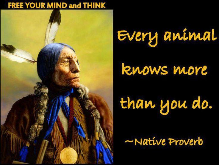 Native proverb