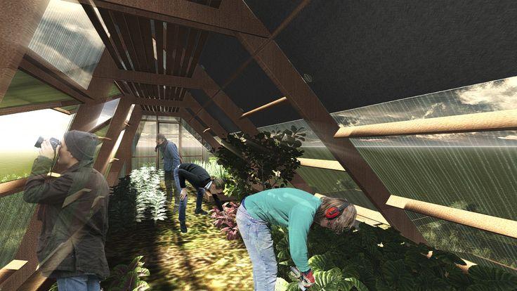 Galería - Construye Solar: Casa Atrapa Lluvia - Atrapa Sol, vivienda sustentable en una ciudad contaminada - 8