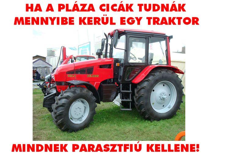 vicc2.png