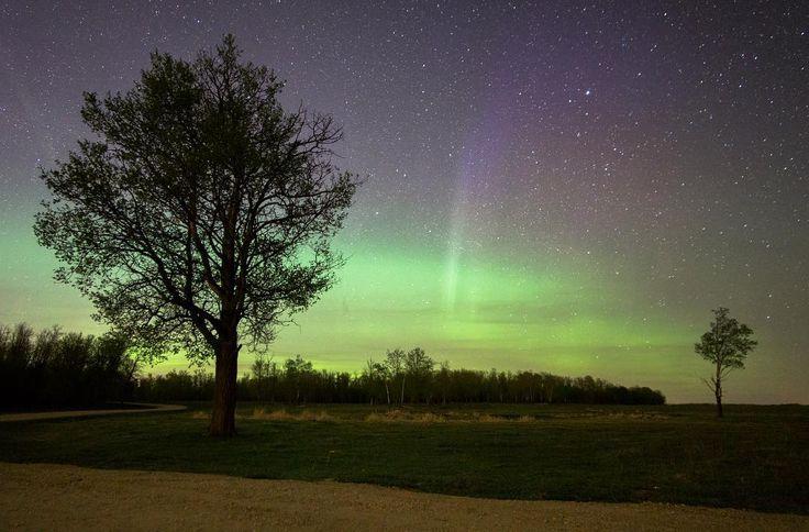 Find me on Instagram! Elk Island puts on the best light show.