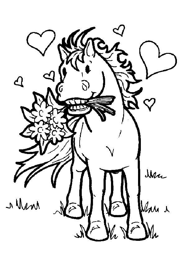 63 besten koně Bilder auf Pinterest   Malbücher, Pferde und Malvorlagen