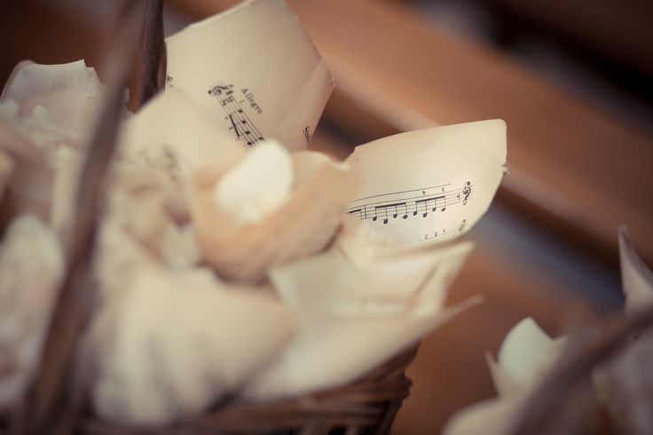 The paper cones filled with rose petals for the exit of the bride and the groom