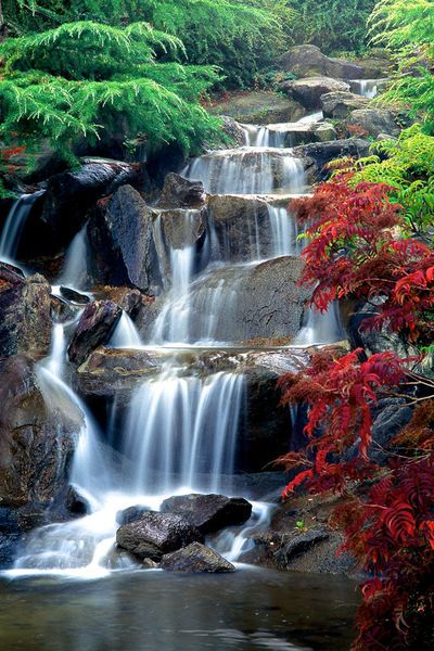 Waterfall, late afternoon, autumn, Sino-Himalayan section ...