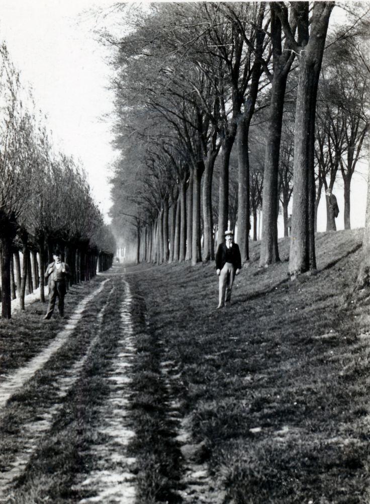 Groene Hilledijk, geheel links het laantje tussen de sloot en de dijk. Foto: C. Mout.