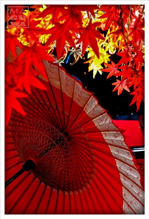 傘と紅葉。そろそろこういう季節になるのかと思うと楽しみです。