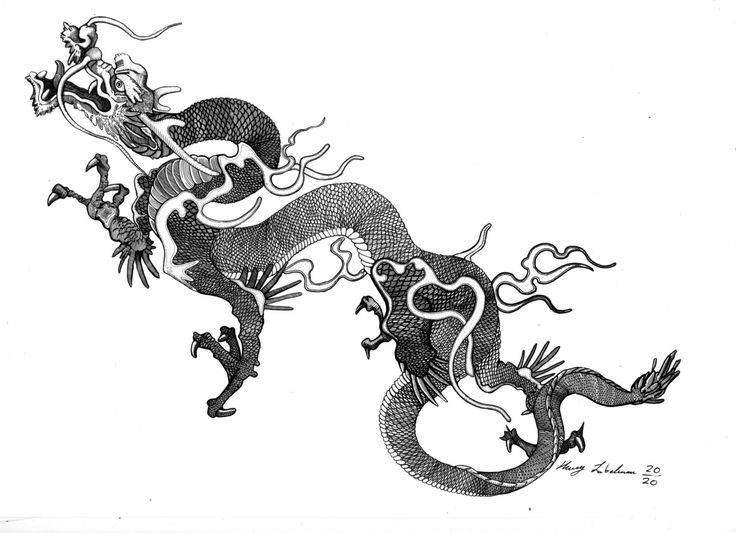 46 best dragon and tiger yin yang stuff images on
