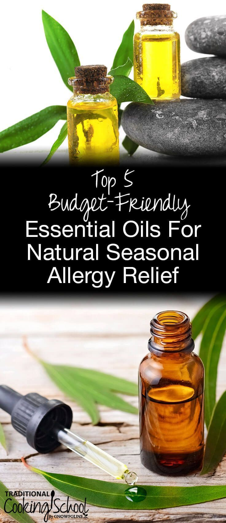 When you need fast relief from allergy symptoms, like that itchy throat, sneezing, and watery eyes, try a more holistic approach instead of an inexpensive and unnatural over-the-counter medicine. Here are 5 potent yet budget-friendly essential oils for natural seasonal allergy relief! #tradcookschool #essentialoilsforallergies #naturalremedies #essentialoils