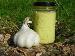 LES BASIQUES: Ingrédients : 3 têtes de gousses d'ail 40 g d'huile d'olive 5 g de jus de citron 10 g d'eau Préparation: éplucher les têtes d'ail, les laver couper les gousses en deux et enlever le germe central mettre les gousses d'ail (environ 150 g une...