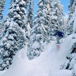 Snowboarding at Big White Ski Resort in Kelowna, British Columbia, Canada