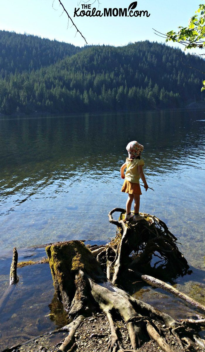 The Buntzen Lake Trail is a beautiful 8 km around a man-made lake near Vancouver, BC. Perfect for a family weekend outing!