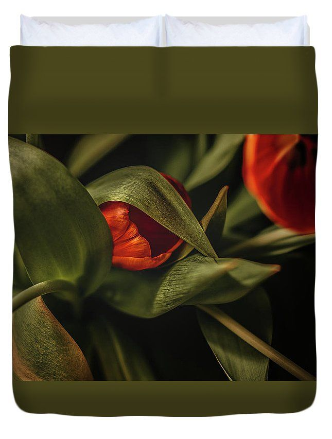 """Tulipdoir"" Red tulips among leaves to greet Spring. Flowers photography by Valerie Rosen Photography on Duvet Covers for your bedroom decor."