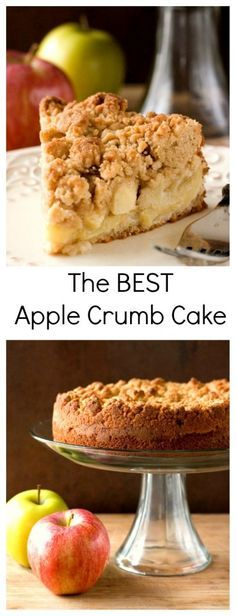 The Best Apple Crumb Cake - the apple crumb cake of your dreams! With tons of apples and the best crumb topping ever!