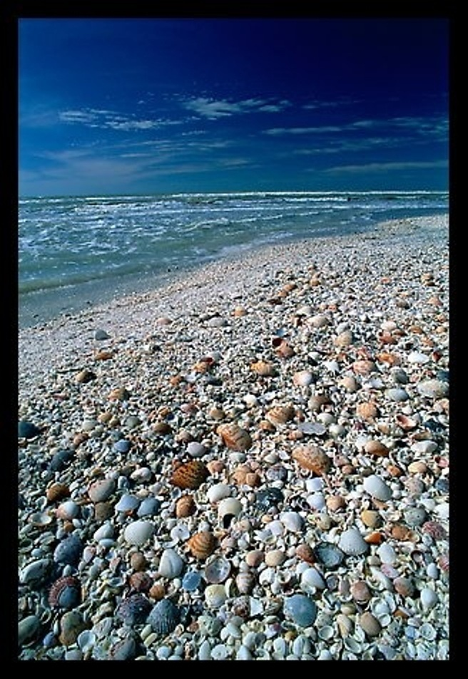 Sanibel Island, FL USA One Day Might Get There How