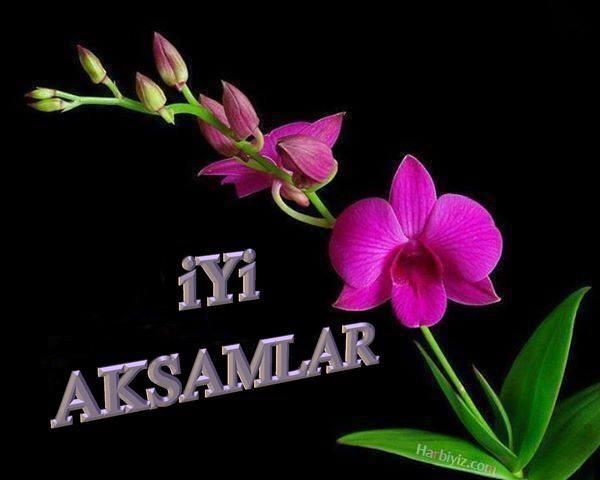 @apsua3 iyi akşamlar    Teşekkur