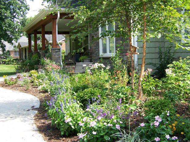 Gardening - Free Plants!  The Garden Glove