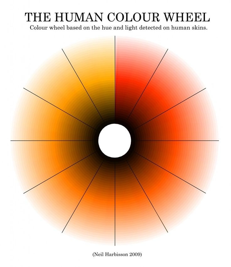 #Cyborg Neil Harbisson's work, The Human Colour Wheel, based on the hue and light detected on human skins.