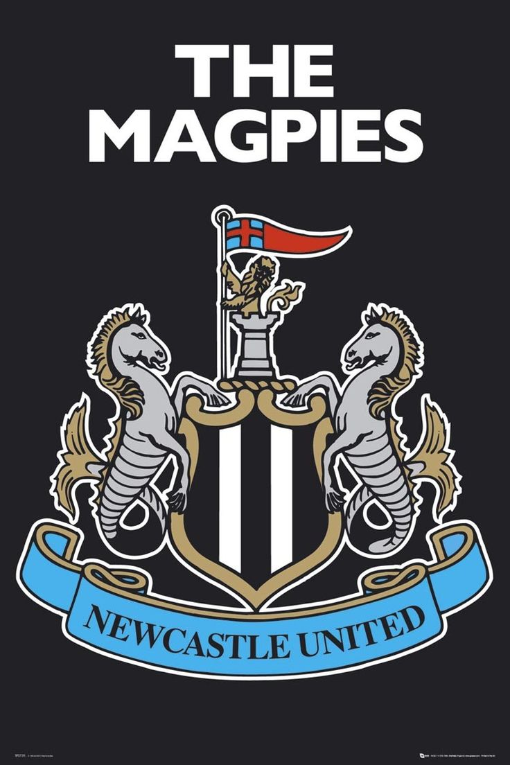 Maney's Magpies (A newcastle united story)