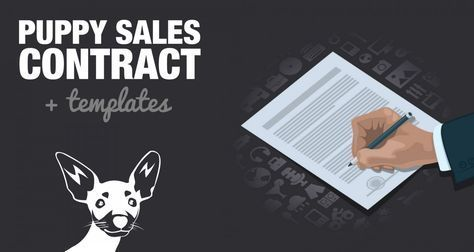 Puppy sales contracts are a must for both breeders and buyers! Enjoy our simple but free contract template and example now!