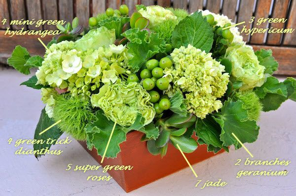 4 Mini Green Hydrangea 4 Green Trick Dianthus 3 Green Hypericum Berries 5 Super Green roses 7 Green Jade cuttings 2 large stems of Lemon Geranium leaves Container: Wood 7.5 inches square by 3.5 inches high Liner: 7 inch diameter by 3 inch high plastic round bowl Foam: ½ brick Oasis Floral Foam