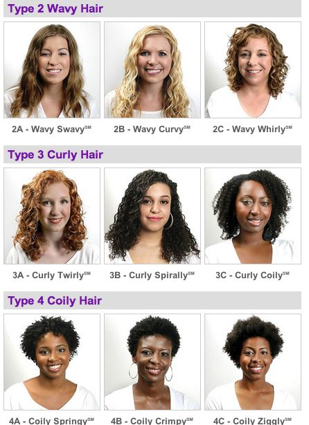 Type 2 Hair | ... with pictures and all here: http://www.naturallycurly.com/hair-types