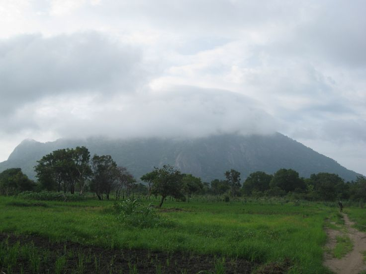 The rainy season just started in Balama district. Here the cloud-covered Mount Maco (1200 m.).