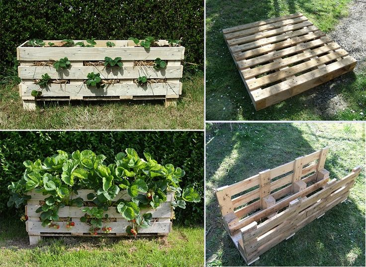 how to diy vertical strawberry planter from recycled pallet like us on. Black Bedroom Furniture Sets. Home Design Ideas