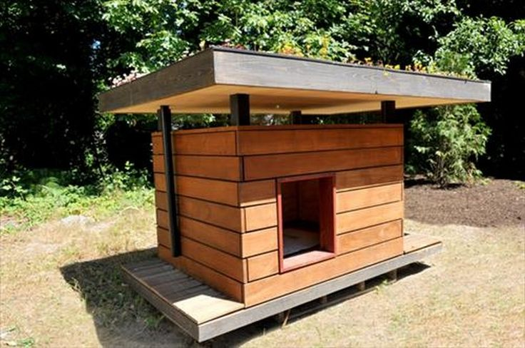 Awesome Pallet Dog House