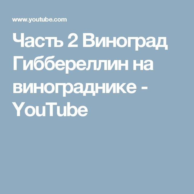 Часть 2 Виноград Гиббереллин на винограднике - YouTube