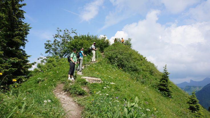 Euro Alps 'Return To Eden' Tour, July 2013  Along the 'Blumenlehrpfad'  www.euroalps.com.au