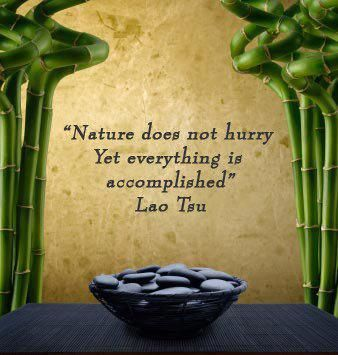 Nature does not hurry, yet everything is accomplished. ~Lao Tsu