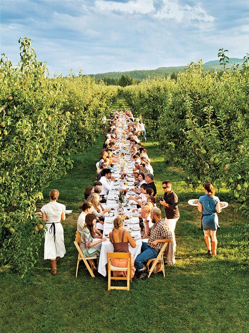 Slow Food and Agritourism in the Pacific Northwest | Kiyokawa Family Orchards in Parkdale, Oregon