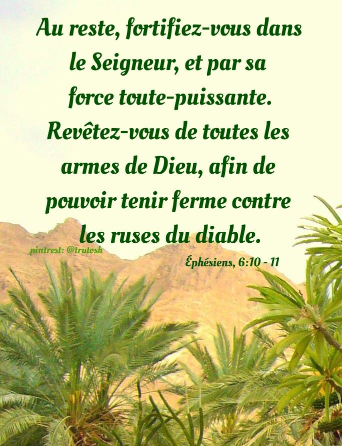 Pin By Rita Rathod On French Bible Herbs