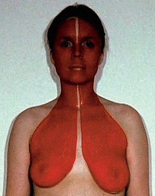 Rebecca Horn - Rotbrust, 1972