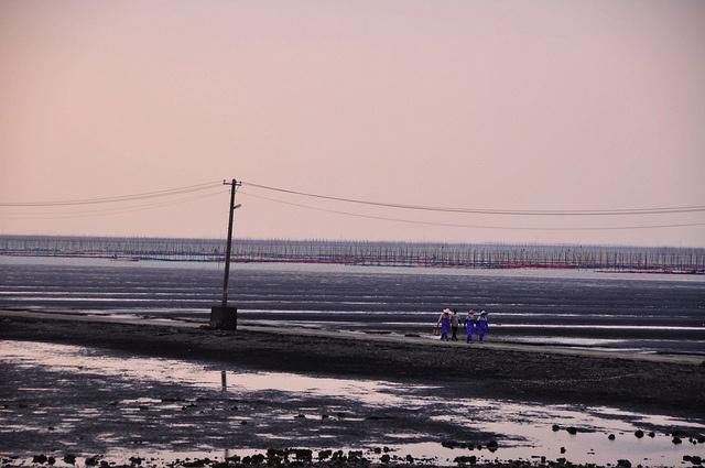 The Ariake Sea