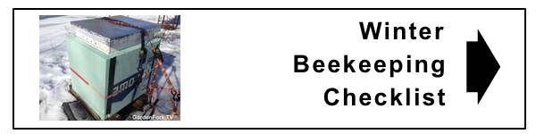 Sugar Cake Recipe for Honeybees - Beekeeping 101