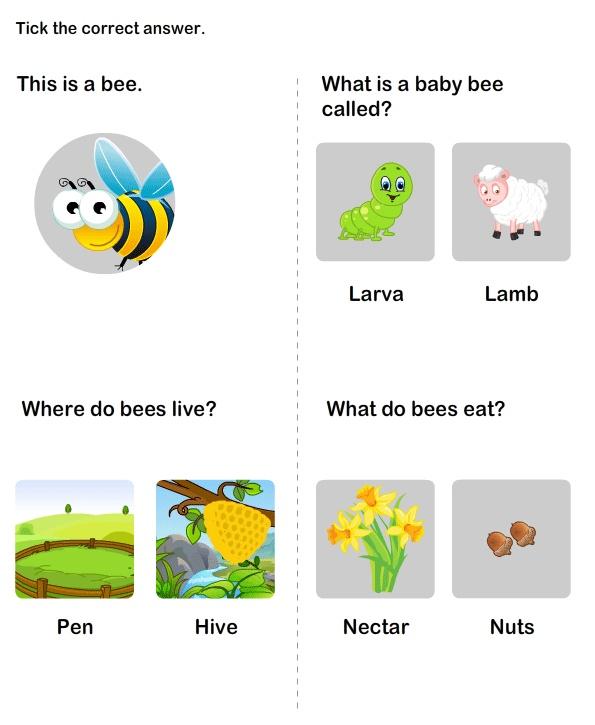 science worksheets for kindergarten 2 moon phases worksheet education flower power free. Black Bedroom Furniture Sets. Home Design Ideas