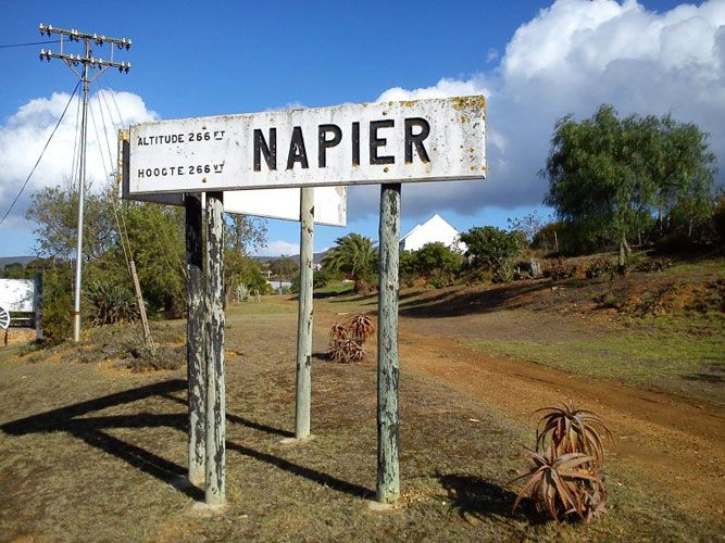 WE LOVE NAPIER! #SouthAfrica
