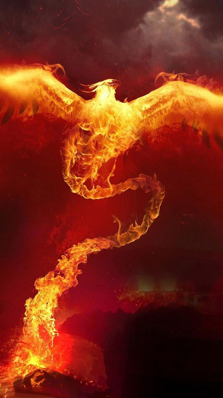 awesome fire phoenix backgrounds for iphone 6
