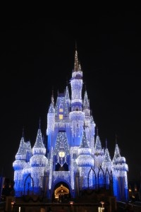 #Disney World #Christmas