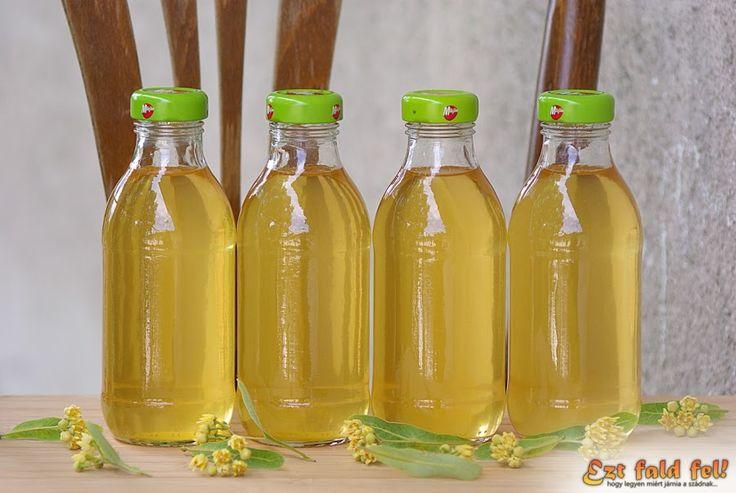 Ezt fald fel!: Hársfavirágszörp készítése – a palackba zárt hársfa illat