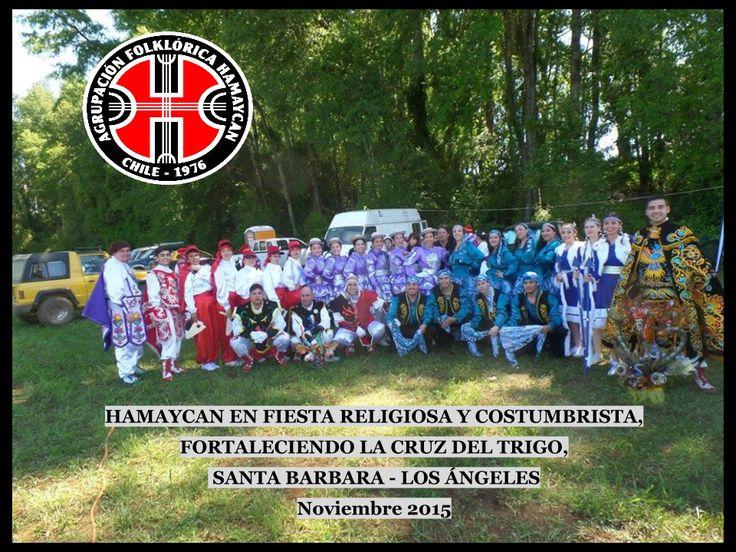 HAMAYCAN EN FIESTA RELIGIOSA Y COSTUMBRISTA, FORTALECIENDO LA CRUZ DEL TRIGO, SANTA BARBARA - LOS ÁNGELES -REGÍON DEL BIO BIO NOV.2015
