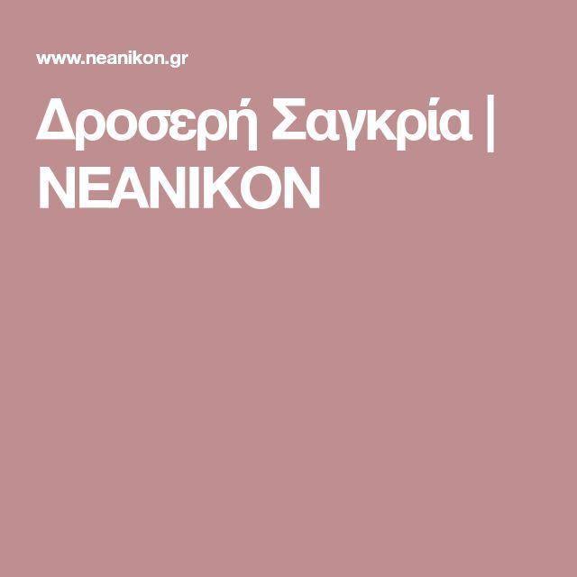 Δροσερή Σαγκρία | NEANIKON