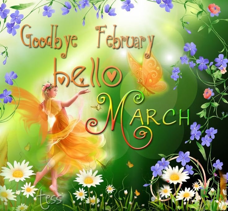 Goodbye February, Hello March♪ :) Wishing You All A Delightful U0026 Peaceful  Month, Where Ever In The World You Are.
