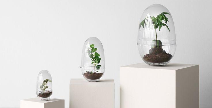 Grow, ett växthus för den enstaka blomman från Design House Stockholm. Grow består av två munblåsta glaskupor. Den övre kupan har en pip så att den kan användas som vattenkanna. Pipen fungerar även som en ventil som släpper in luft samt reglerar temperatur och fuktnivå. Grow är formgiven av Caroline Wetterling.