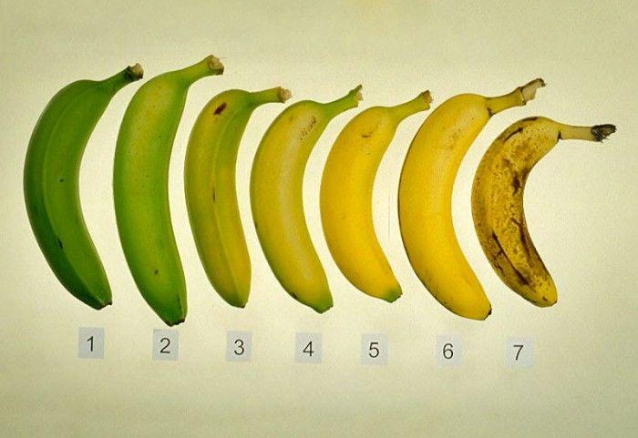 Поэтому помните, что зрелый банан — один из самых эффективных противораковых средств. А желтый банан с темными пятнами, с точки зрения его пользы для здоровья — в 8 раз лучше.