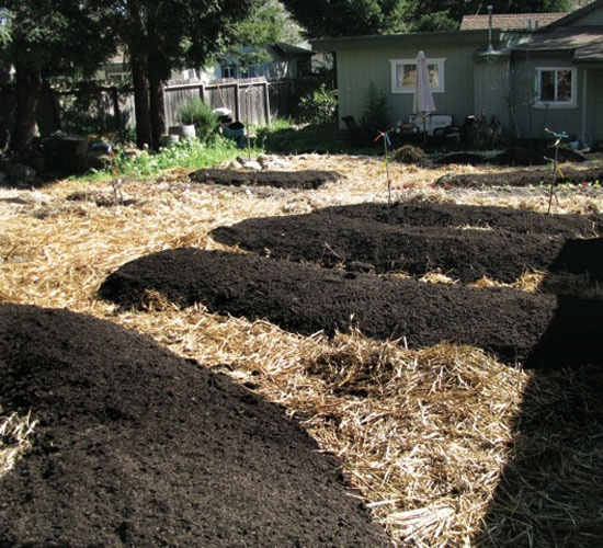 Garden Soil Preparation Techniques: Sheet Mulching And Double Digging