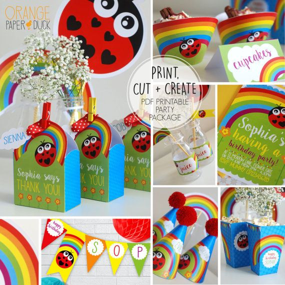 DIY Rainbow and Ladybird Party Package. Print, cut and make you own party accessories!