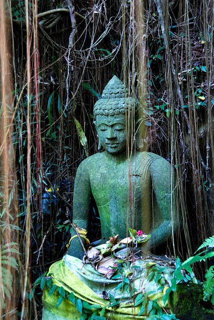 Buddha from The Lost Temple in Ubud, Bali. Is Bali on your bucket list? Join me in October for an Ayurvedic Retreat.