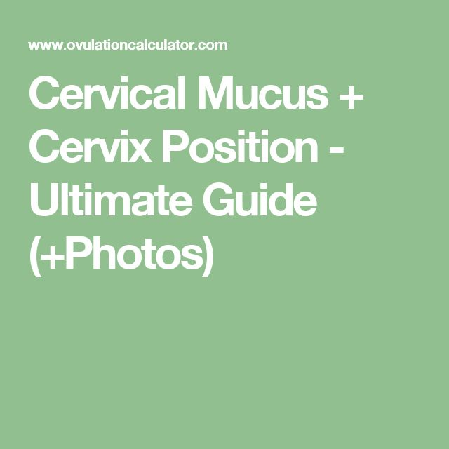 Cervical Mucus + Cervix Position - Ultimate Guide (+Photos)